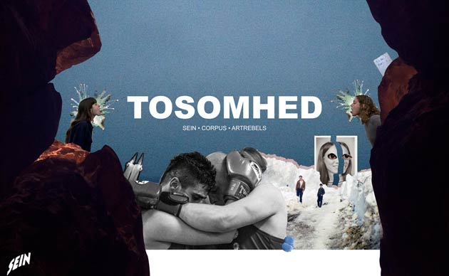 Tosomhed